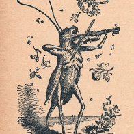 grasshopperFiddle.jpg