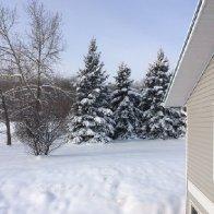 Winter on Hardy's Hill November 5 2018_1.JPG