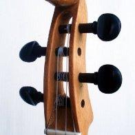 My pig-head Gourd Banjo