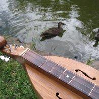 Magowan Mountain Dulcimer & Ducks