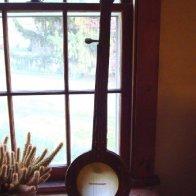 Peterson fretless mountain banjo 3