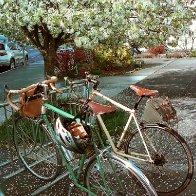 Spring... bicyle season!