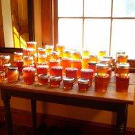 honey harvest 2012