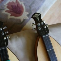 Closeup of Hennessy headstock
