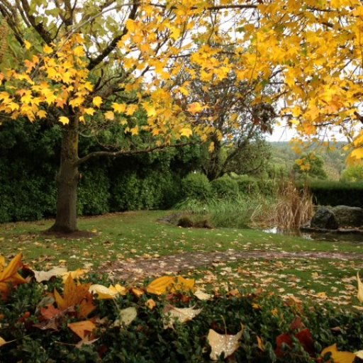 Tasma Front Garden