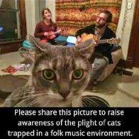 folk cat.jpg