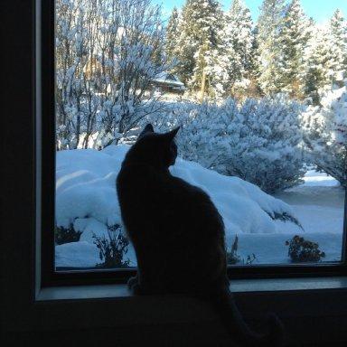 Winter's Turning