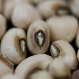 new-years-tradition-the-origins-of-eating-black-eyed-peas